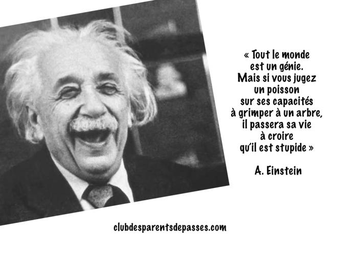 Einstein. Changer l'éducation nationale. Discipline Positive. Sandrine Franceschi